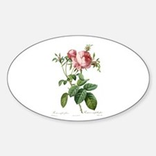 Lovely vintage pink rose flowers Decal