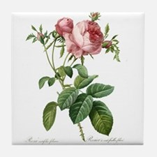 Lovely vintage pink rose flowers Tile Coaster