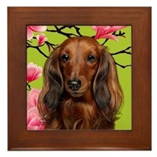 Long Haired Dachshund Dog Framed Tile