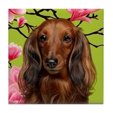 Long Haired Dachshund Dog Tile Coaster