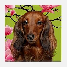 Long Haired Dachshund Dog Tile Coaster