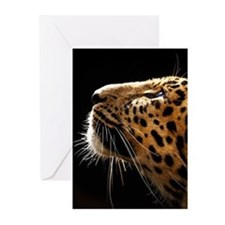 Amur Leopard Portrait Greeting Cards
