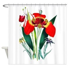 Tiger Lilies by Loudon Shower Curtain