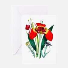 Tiger Lilies by Loudon Greeting Card