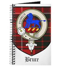 BruceCBT.jpg Journal