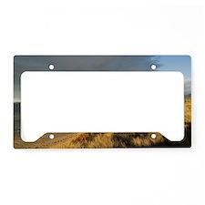 seven mile beach License Plate Holder