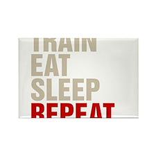 Train Eat Sleep Repeat Magnets