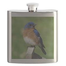 Bluebird Flask