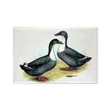 Blue Swedish Ducks Rectangle Magnet
