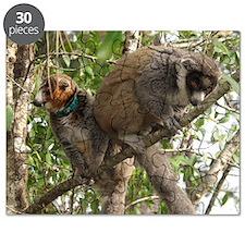 Mongoose Lemur Puzzle
