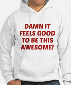 Damn It Feels Good To Be This Awesome! Hoodie
