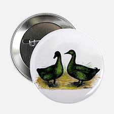 Cayuga Ducks Button