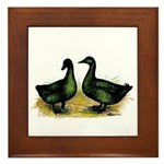 Cayuga Ducks Framed Tile