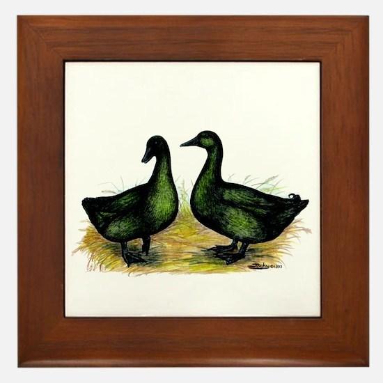 Cayuga Ducks Framed Tile