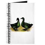 Cayuga Ducks Journal