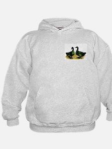 Cayuga Ducks Hoodie