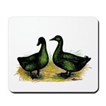 Cayuga Ducks Mousepad