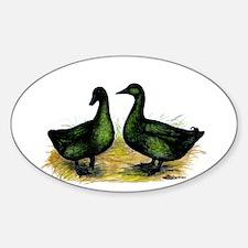 Cayuga Ducks Oval Decal