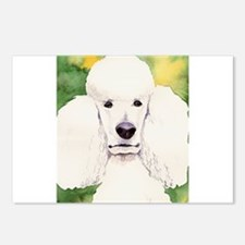 Standard Poodle! Postcards (Package of 8)