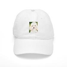 Poodle Merchandise! Baseball Cap