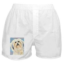 Lhasa Apso Stuff! Boxer Shorts