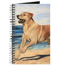 Lab on Beach Journal