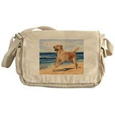 Lab on Beach Messenger Bag