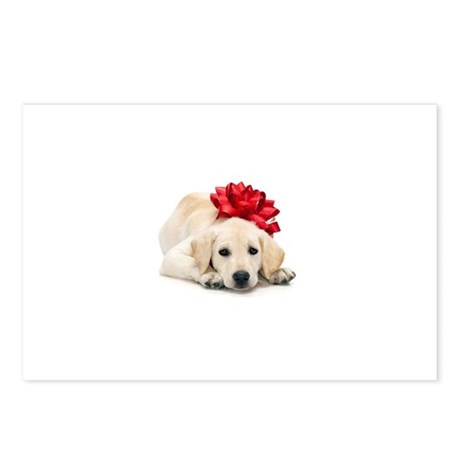 Golden Retriever Puppy with R Postcards (Package o