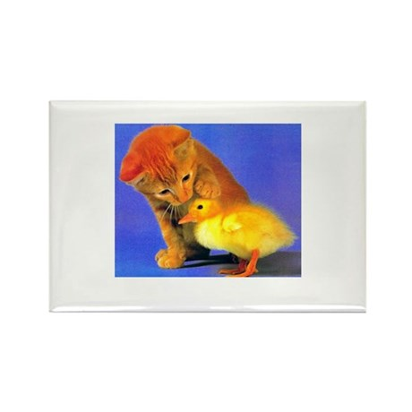 Kitten and Duck Rectangle Magnet (10 pack)