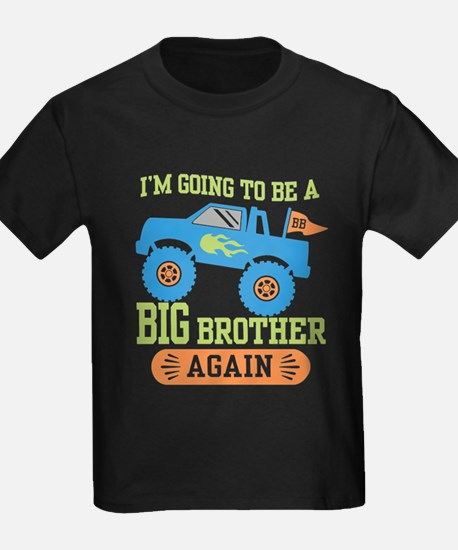 Big Brother Again T