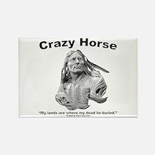 Crazy Horse: My Lands Rectangle Magnet