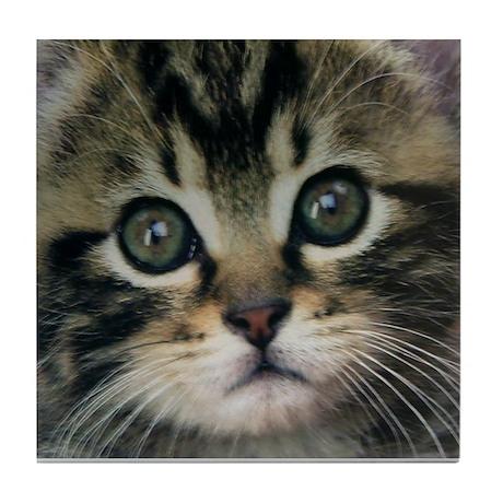 Kitten Tile Coaster