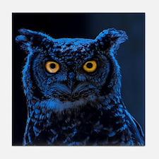 Moonlight Owl Tile Coaster