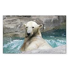 Swimming Polar Bear Decal