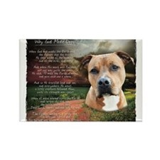 Cute I love my staffordshire bull terrier Rectangle Magnet