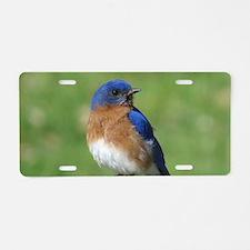 Bluebird Aluminum License Plate