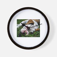 Baby Rufus Grass copy.jpg Wall Clock