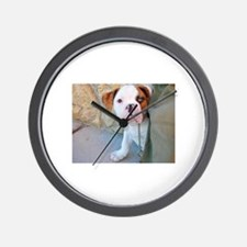 Baby Rufus copy.jpg Wall Clock