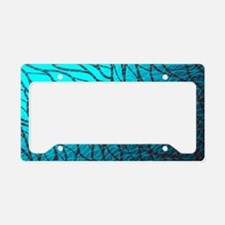 Teal Abstract License Plate Holder