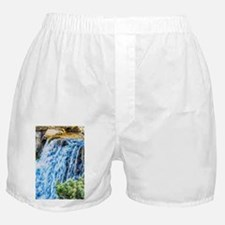Small Waterfall Boxer Shorts