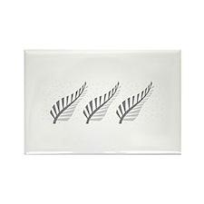 Three silver ferns Magnets