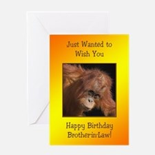 For brother-in-law, Birthday card with a baby oran