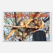 Squirrel Gossip Photo Rectangle Decal