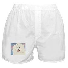 Coton de Tulear Boxer Shorts