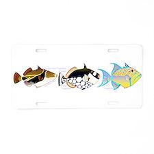 3 Triggerfish Aluminum License Plate