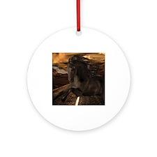 Black Stallion Ornament (Round)