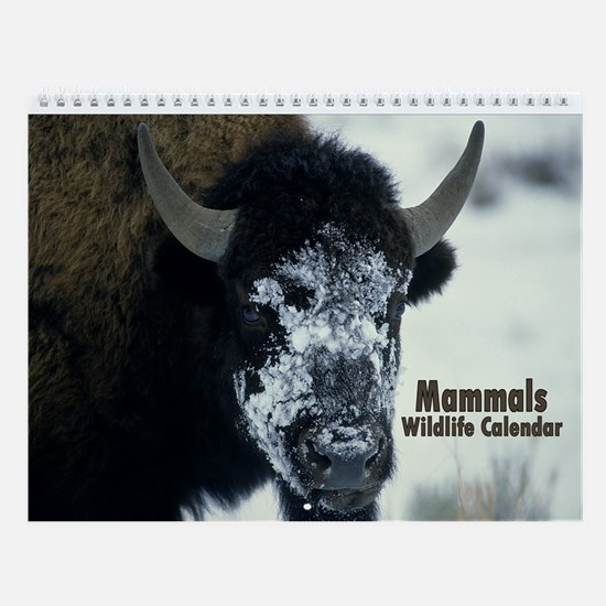 Mammals Wildlife Wall Calendar