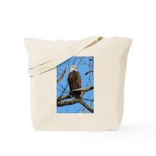 Bald Eagle on Guard Tote Bag