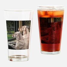 English Setter Puppies.JPG Drinking Glass