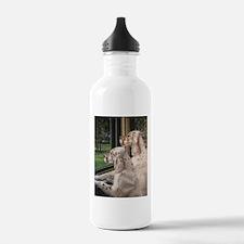 English Setter Puppies.JPG Water Bottle